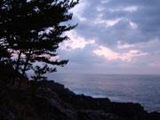 写真:気仙沼